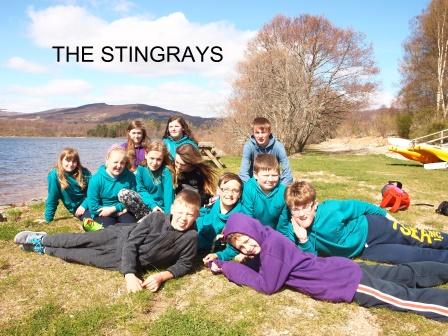 STINGRAYS 2